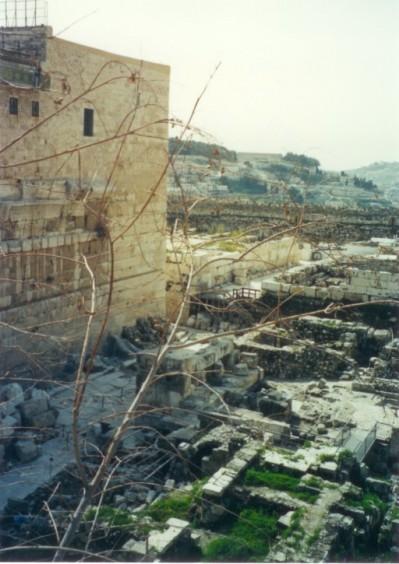 ancient-jerusalem-the-city-of-david-web.jpg