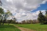 zagart701 - landscape